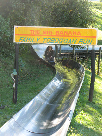 Coffs Harbour Big Banana Toboggan Ride