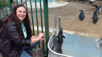 Hand Feeding Fairy Penguins at Pet Porpoise Pool, Coffs
