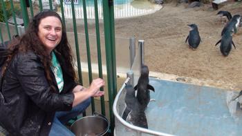 Hand Feeding Fairy Penguins at Pet Porpoise Pool, Coffs