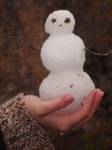 Snowman on Mt Wellington, Hobart, Tasmania