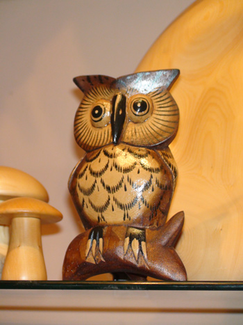 An Owl at The Woodcraft Shop, Richmond, Tasmania